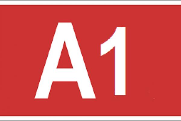 IMAGEA1